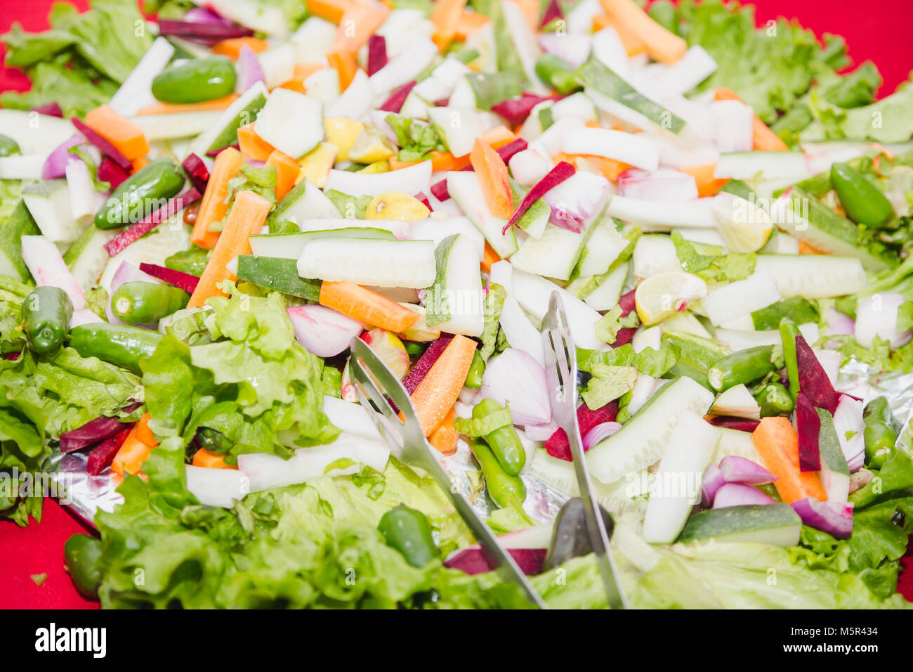 Mixed Green Vegetables Salad with Tounge - Stock Image