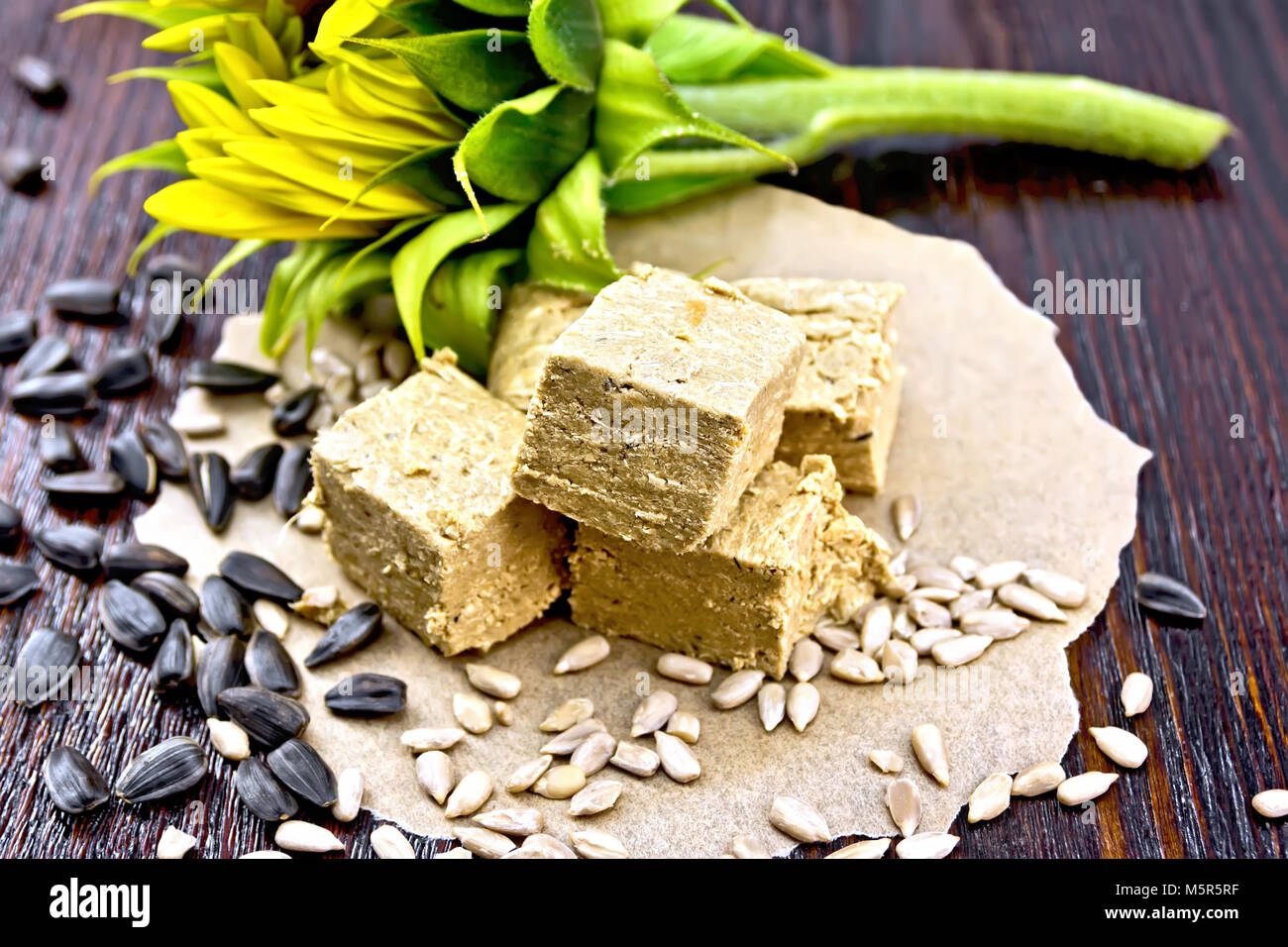 Eastern sweet halva sunflower on paper, sunflower seeds and flower on a wooden board background - Stock Image