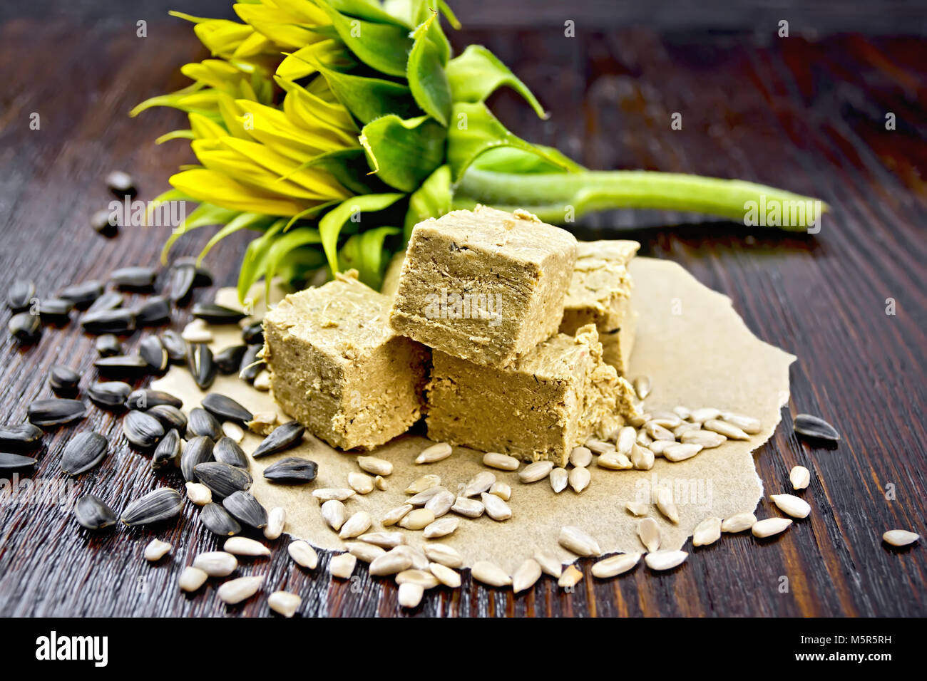 Eastern sweet halva sunflower on paper, sunflower seeds and flower on a background of a dark wooden board - Stock Image