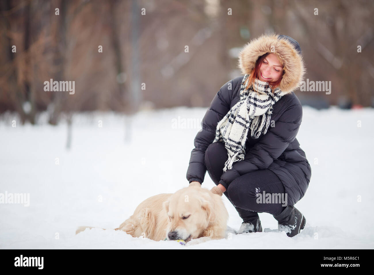 Photo of woman squatting next to labrador in winter park - Stock Image