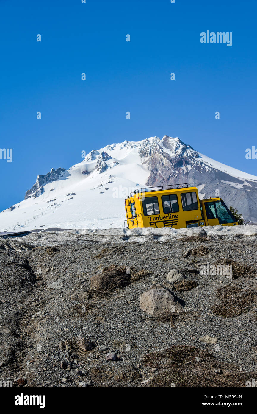 A yellow Sno-Cat with Palmer Snow Field in the background just outside Timberline Lodge.  Mt Hood National Forest, - Stock Image