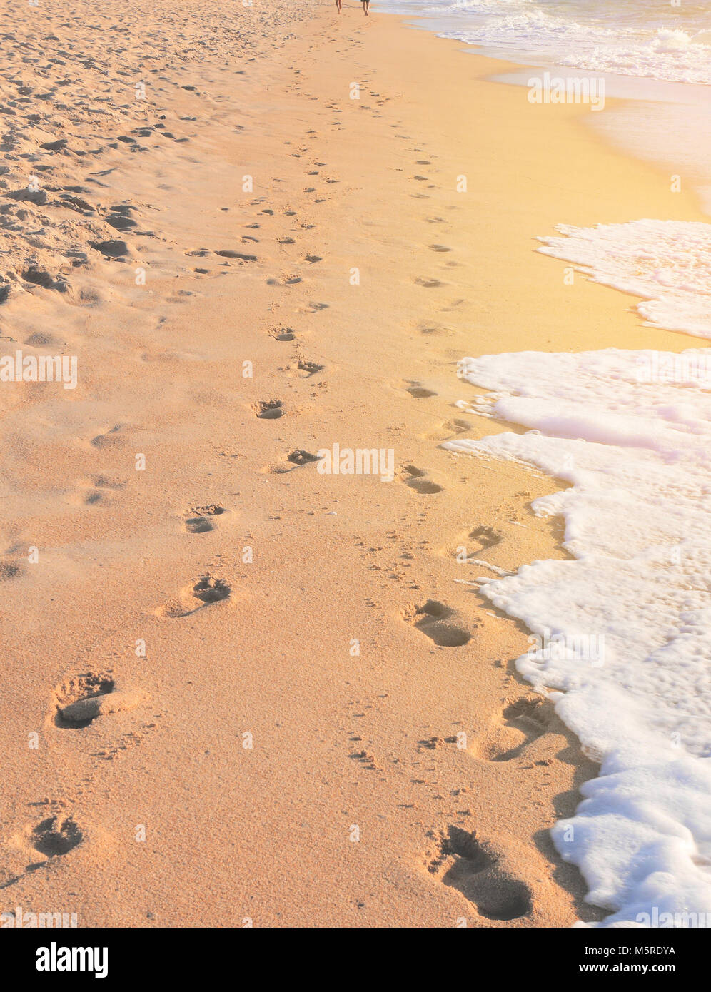 Footprints of a couple on a beach reflecting a journey of married life - Stock Image