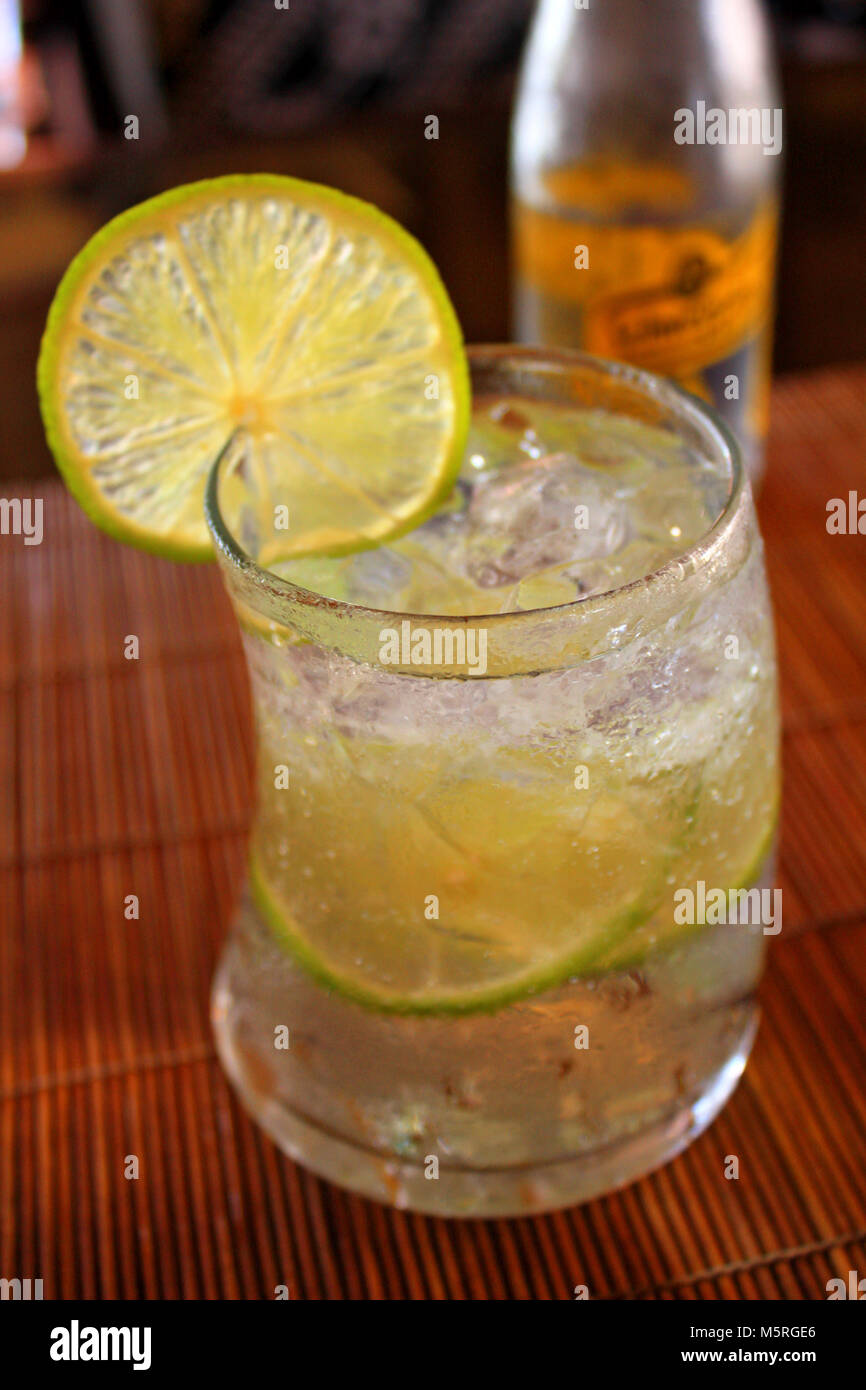 Glass of iced gin tonic soda with lemon slices - Stock Image