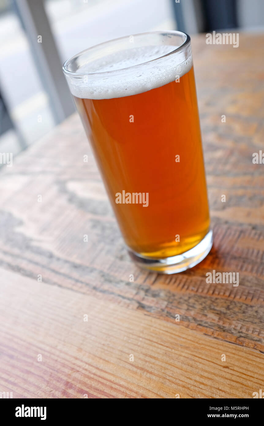 half pint glass of real ale beer, norwich, norfolk, england - Stock Image