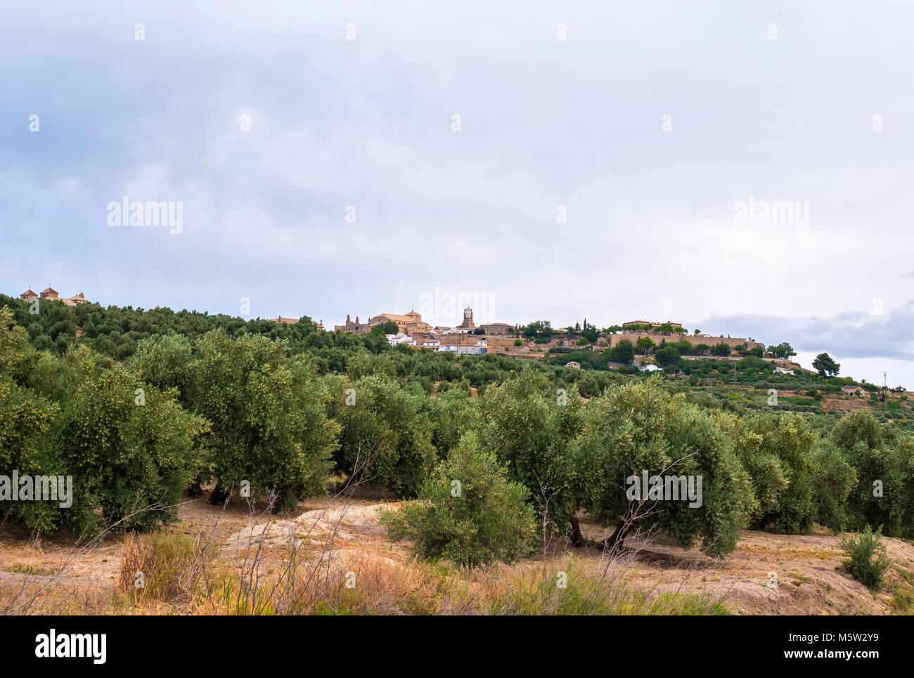 Úbeda. Jaén. Andalucía. España - Stock Image