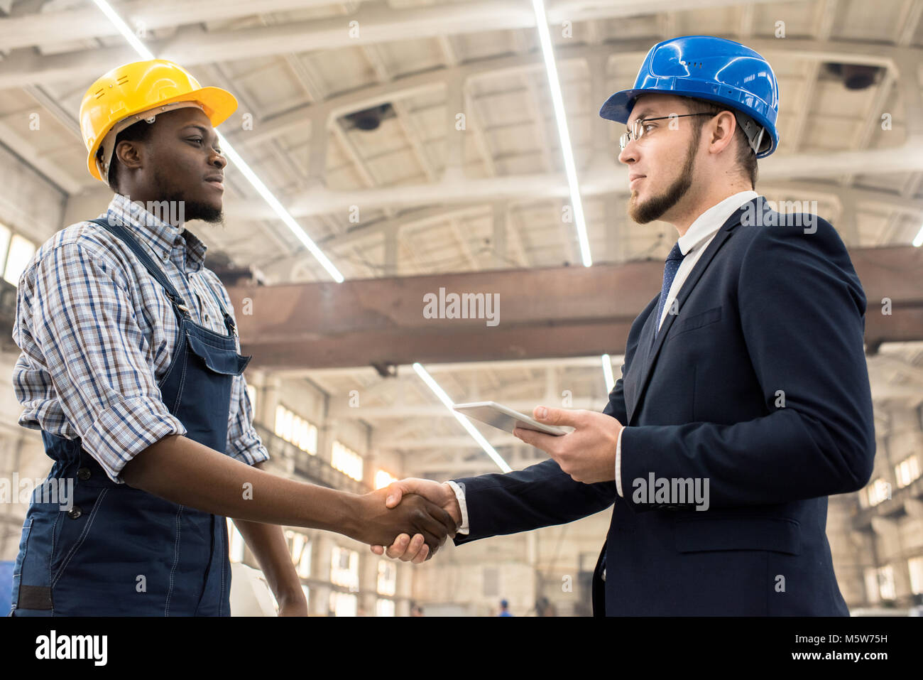 Handsome African American worker wearing overall and hardhat greeting confident investor with firm handshake while - Stock Image