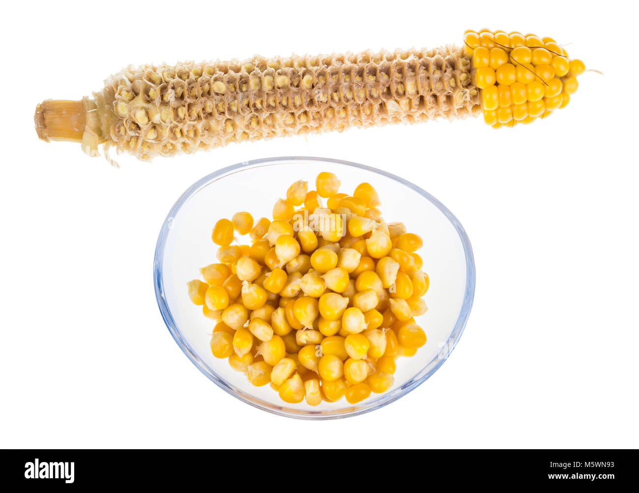 Yellow boiled corn and empty cob. Partly eaten corncob and pile of maize grains in glass bowl isolated on white - Stock Image