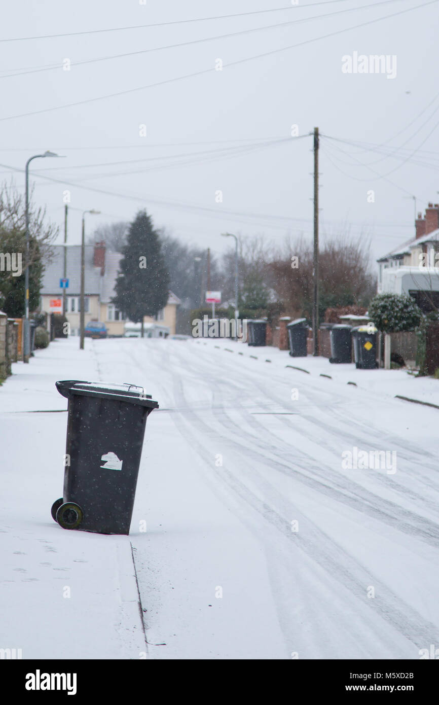 Kidderminster, UK. 27th February, 2018. UK weather: as we wake to a fresh fall of snow, people and animals carry - Stock Image