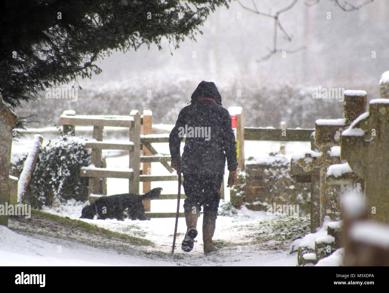 Ripe, East Sussex. 27th February 2018. Snowy conditions in Ripe, East Sussex, as the 'Beast from the East' - Stock Image