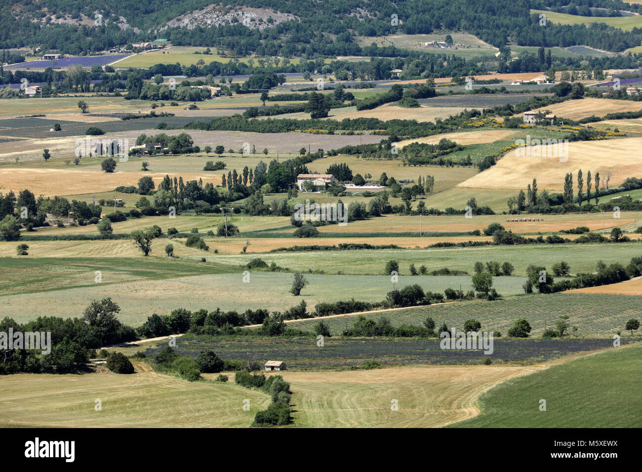 Patchwork of Farmer's fields in valley below Sault, Provence France - Stock Image