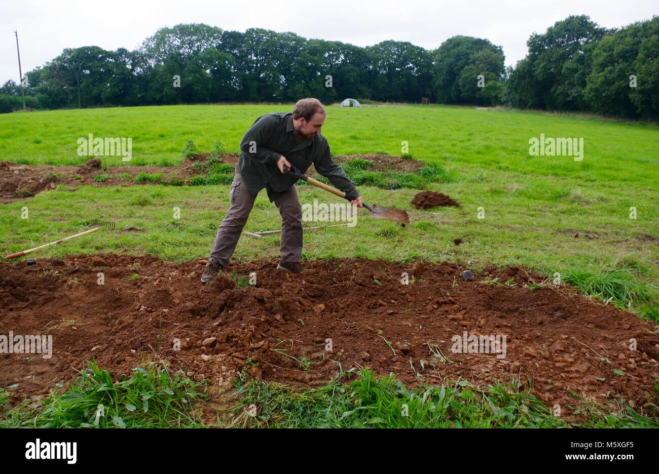 Young Handsome Man Manually Digging a Grassy Field in Mid Devon to Build a Poly Tunnel. Lydcott Nursery, Morchard Stock Photo