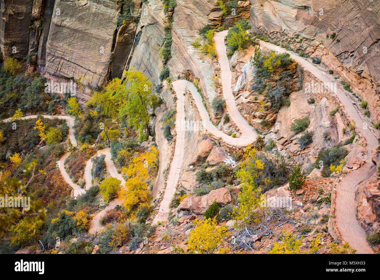 Wiggly Hike up Angel's Landing, Zion National Park - Willy's Wiggles Stock Photo