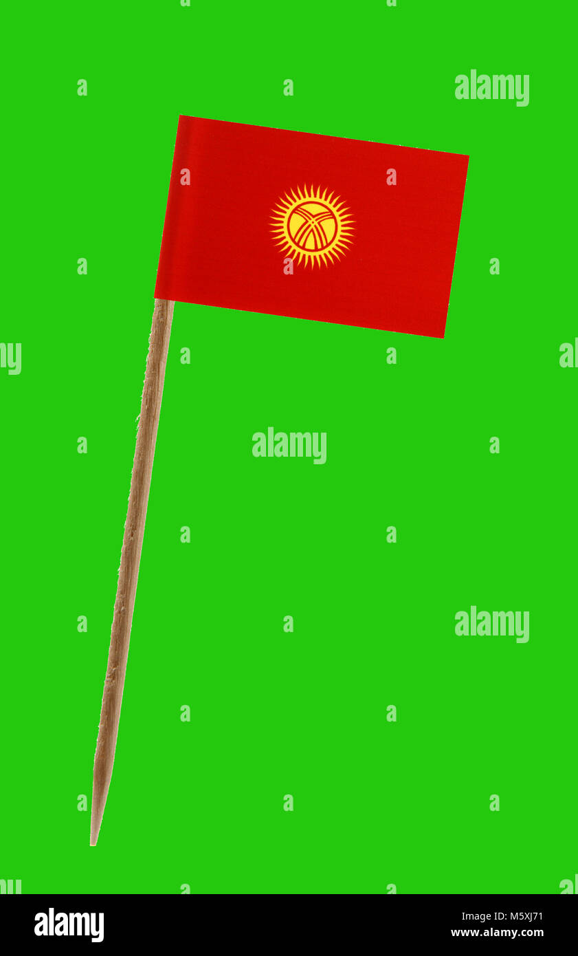Tooth pick wit a small paper flag of Kyrgystan on a green screen for chromakey - Stock Image