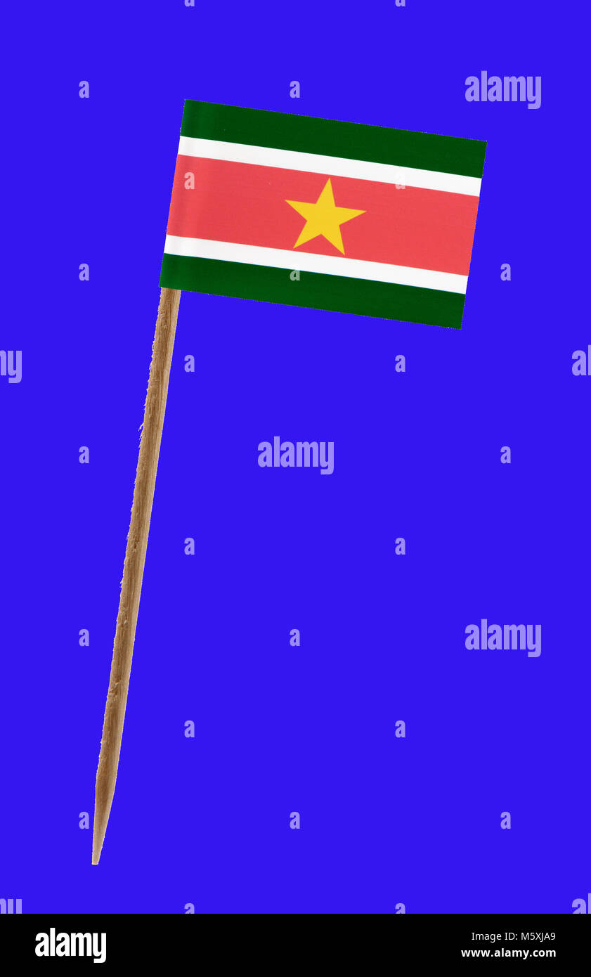 Tooth pick wit a small paper flag of Suriname on a green screen for chromakey - Stock Image
