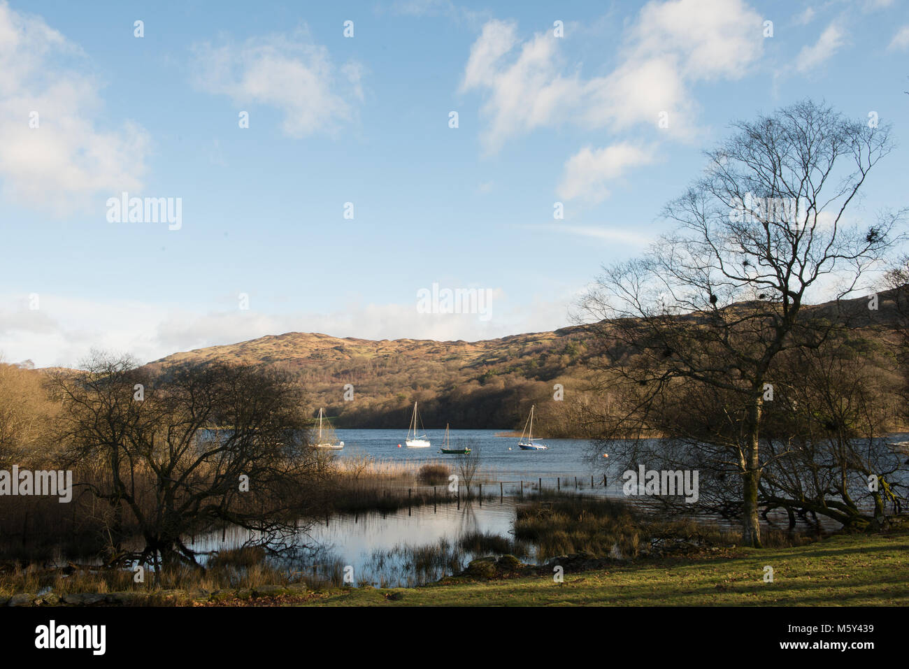 Coniston Water from Lake Bank with some moored sailing boats sitting in the bay. - Stock Image