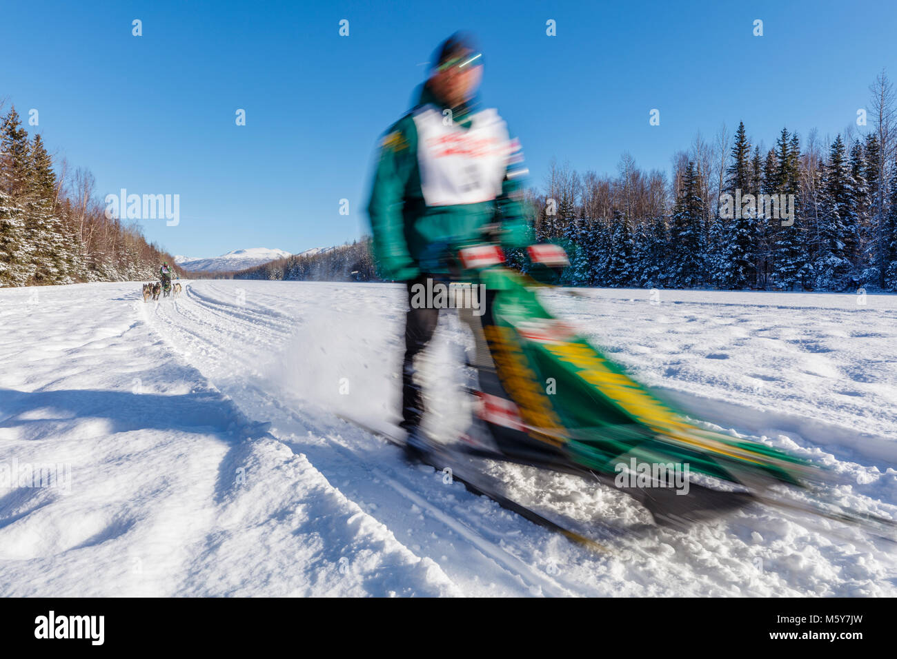 Musher Michael Tetzner competing in the Fur Rendezvous World Sled Dog Championships at Campbell Airstrip in Anchorage - Stock Image