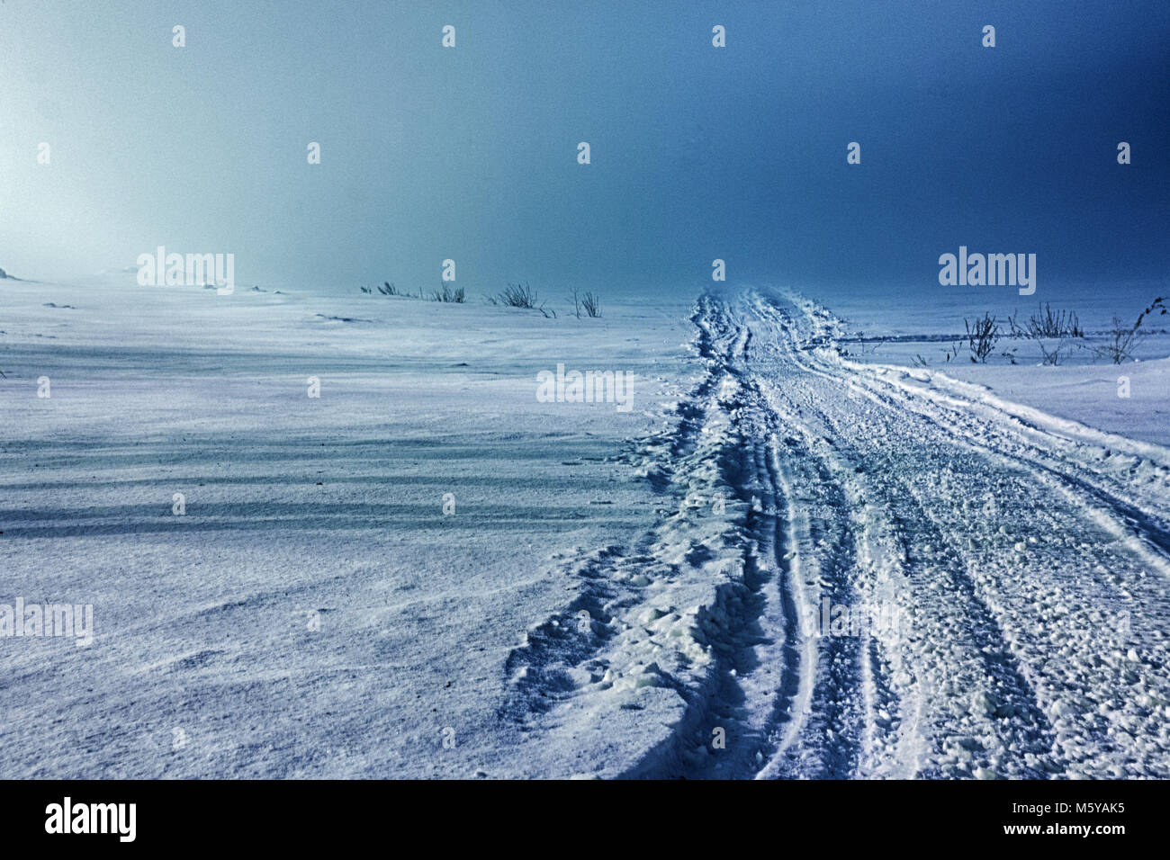 night winter landscape . snowfield, fog and road - Stock Image