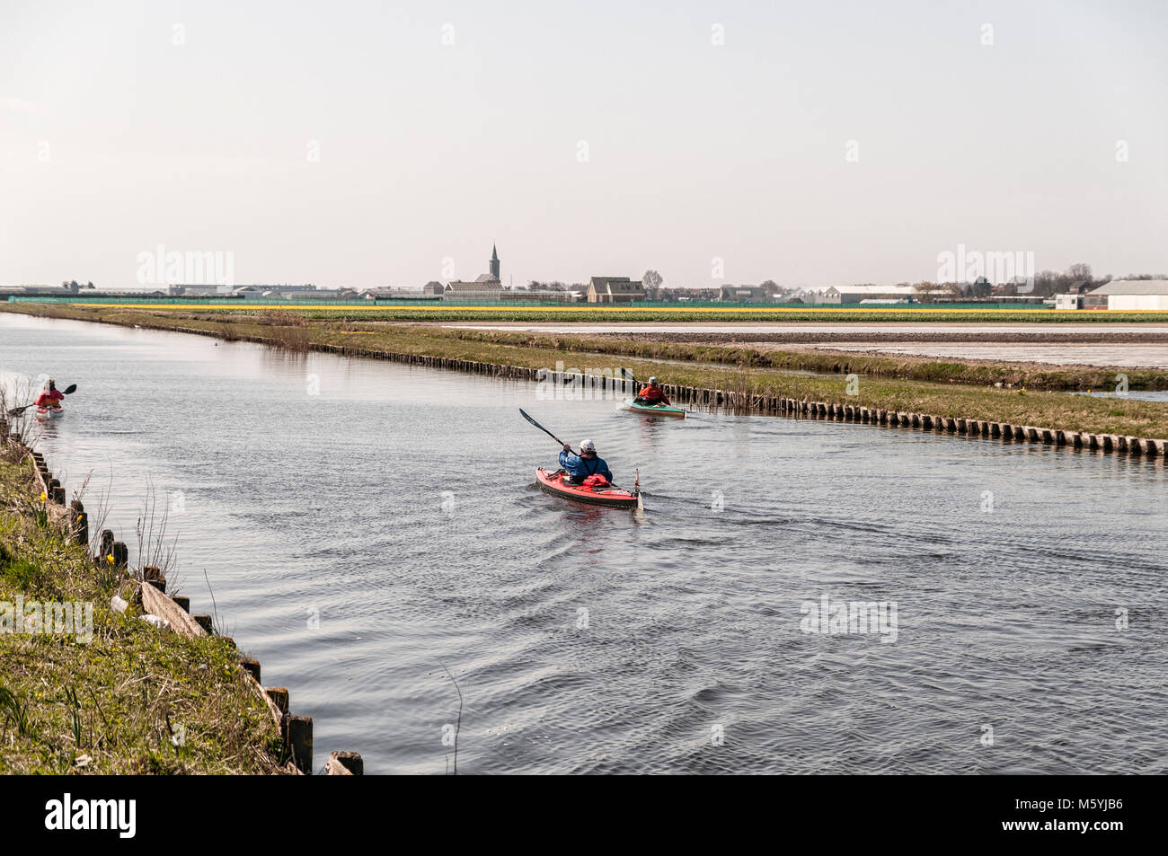 canoeing on the Dutch rivers surrounded by meadows - Stock Image