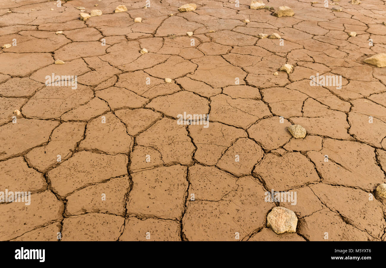 Mud texture of drying prism desiccation cracks in soil. - Stock Image