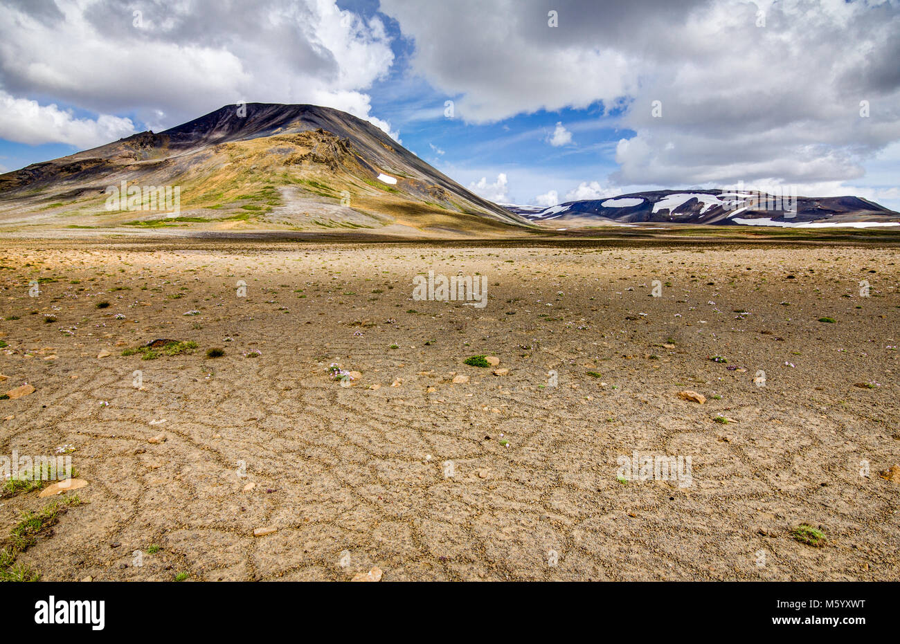 Patternd ground with polygons in beautiful primordial icelandic highland. Iceland - Stock Image