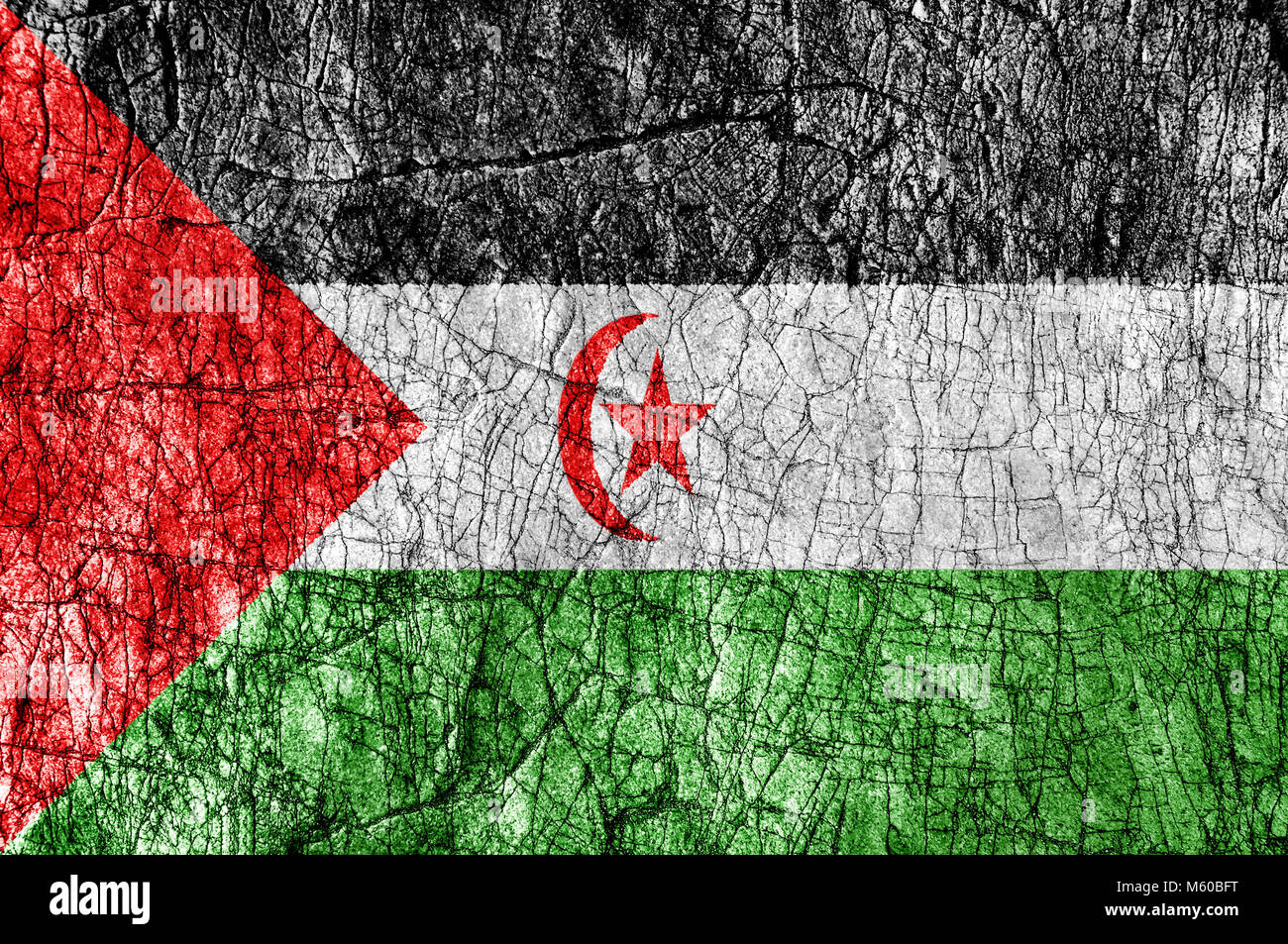 Grudge stone painted Sahrawi Arab Democratic Republic flag - Stock Image