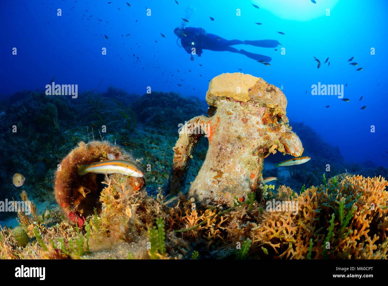 Mediterranean coral reef with Amphora underwater and scuba diver. Adriatic Sea, Mediterranean Sea, Island Lastovo, - Stock Image