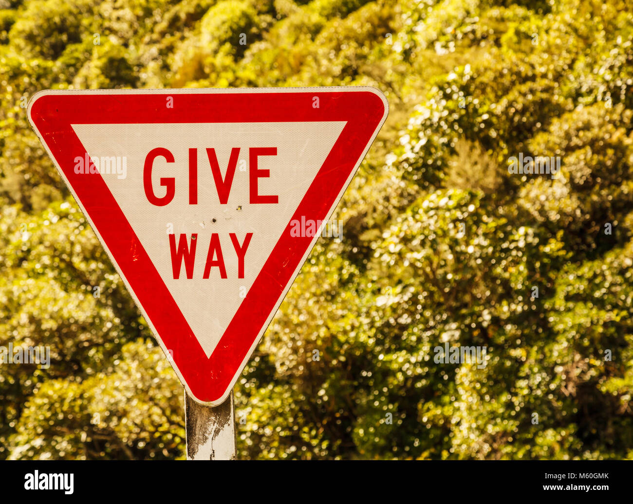 Give Way Triangular Shaped street traffic sign on the rural road area in the nature of New Zealand scenic driving - Stock Image