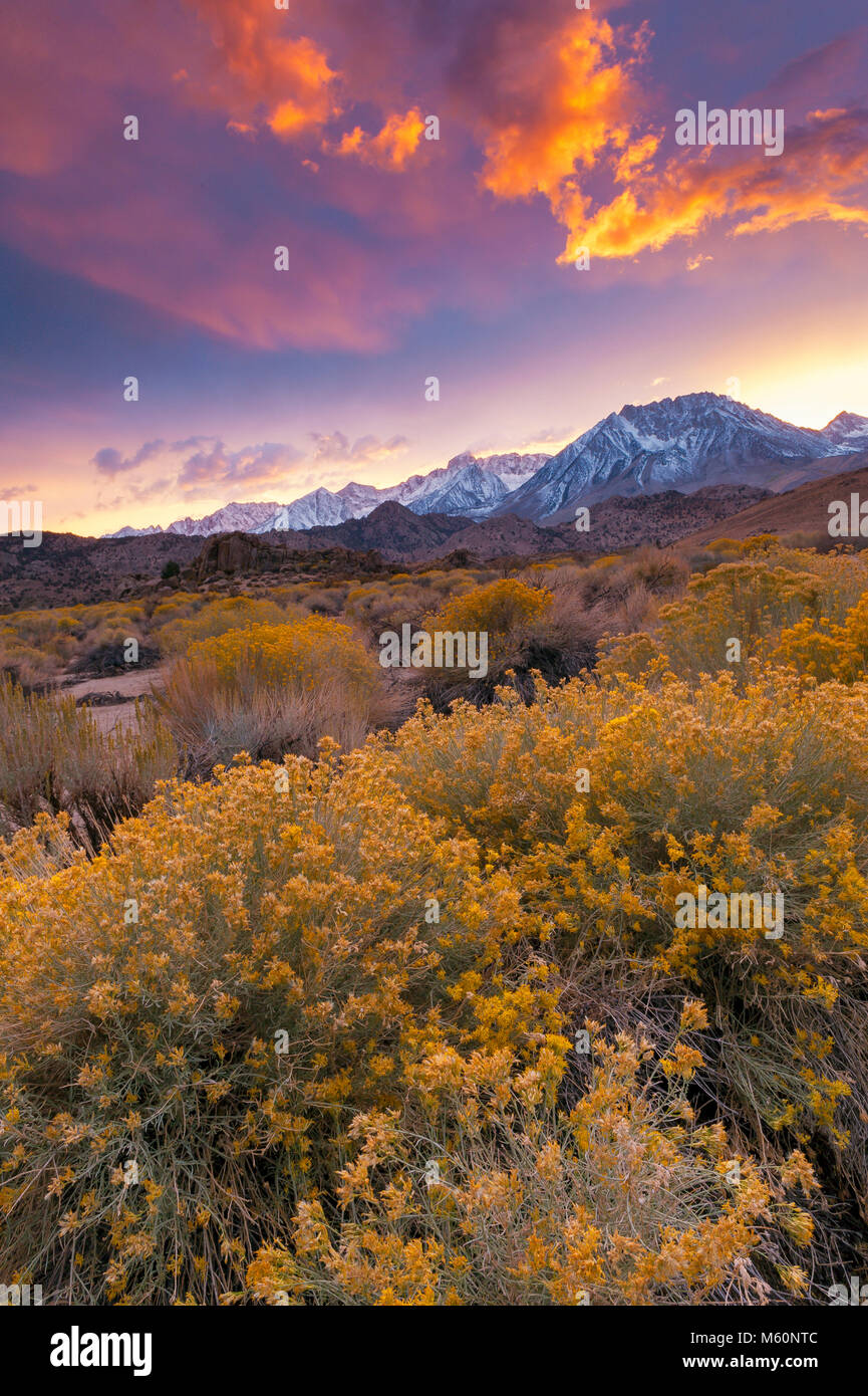 Sunset, The Buttermilks, Basin Mountain, Bishop Creek National Recreation Area, Inyo National Forest, California - Stock Image