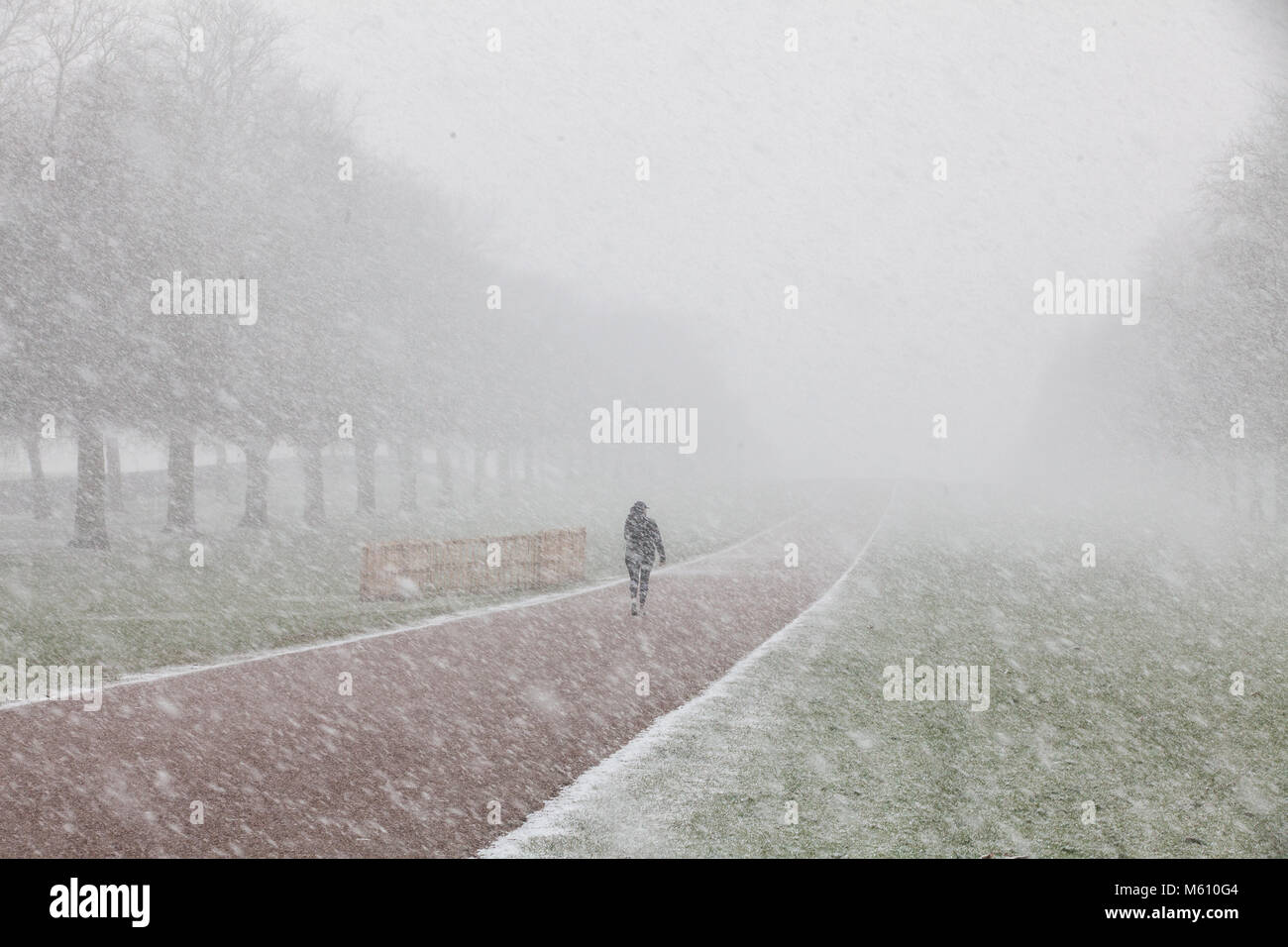 Windsor, UK. 27th February, 2018. A woman walks on the Long Walk in Windsor Great Park in swirling snow. Credit: Stock Photo