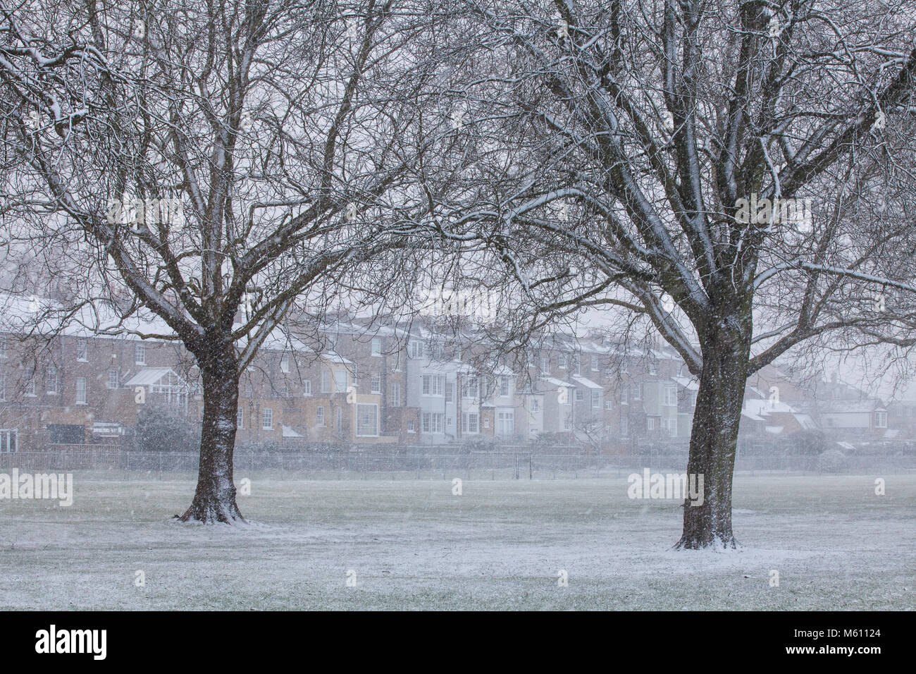 Windsor, UK. 27th February, 2018. Snow falls in Windsor Great Park. Credit: Mark Kerrison/Alamy Live News Stock Photo