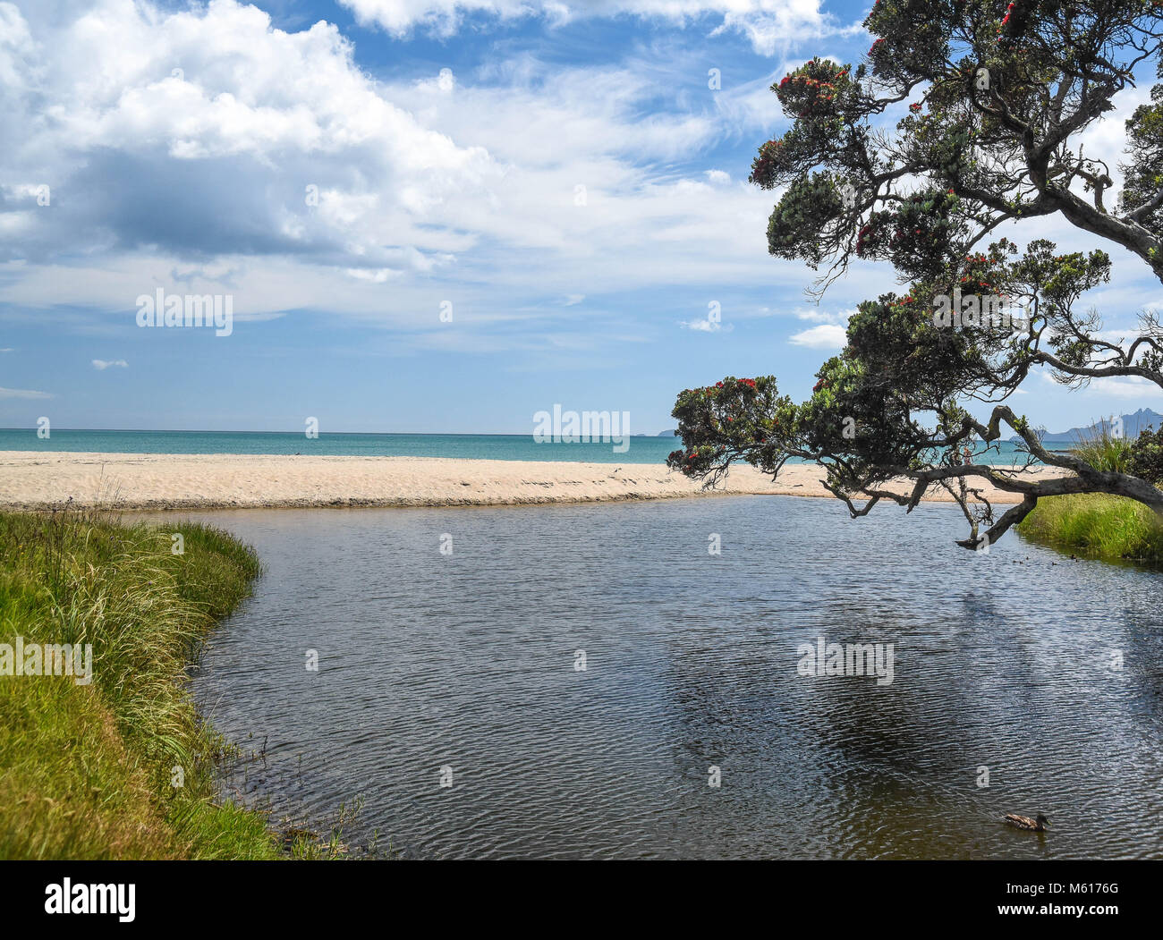 view from the beach at Langs, new zealand - Stock Image