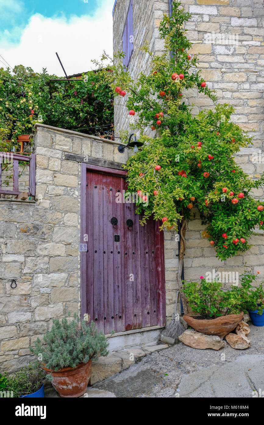 Pomegranate tree with fruit nestling beside double wooden doors which are closed.  Shutting off the entrance to Stock Photo