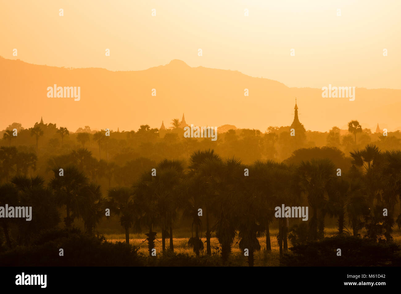 Landscape with temples and pagodas in the magic evening light in Bagan, Myanmar Stock Photo