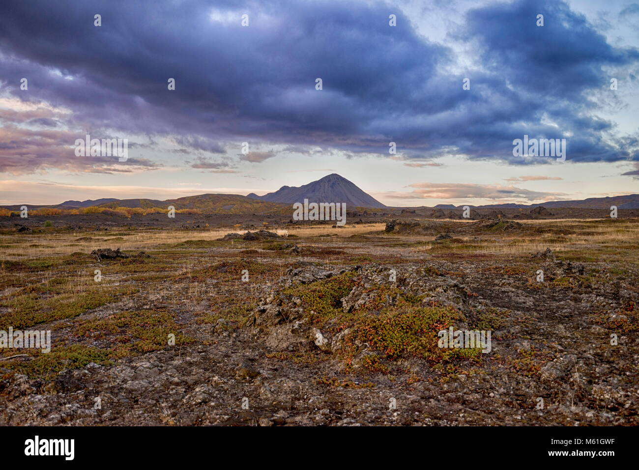 Dirt and high mountain road in Iceland - Stock Image