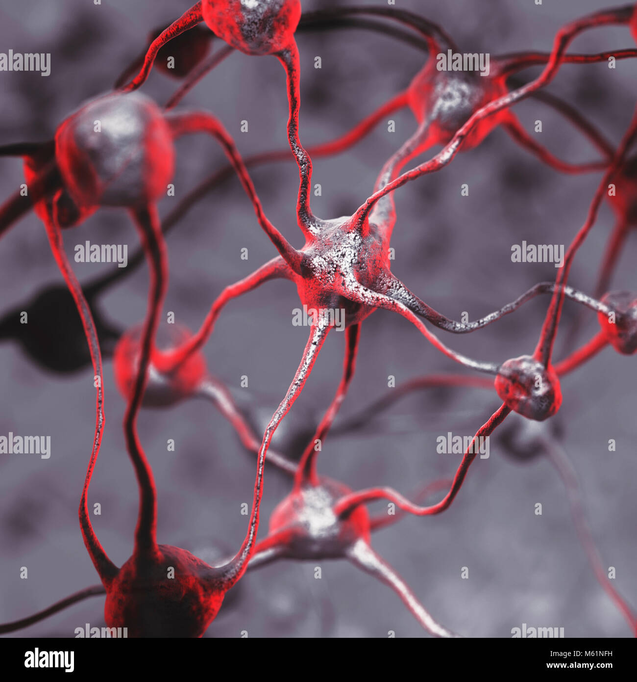 3D illustration of a Biological Neural network of a human brain, interconnected neurons, brain cells and connections, - Stock Image