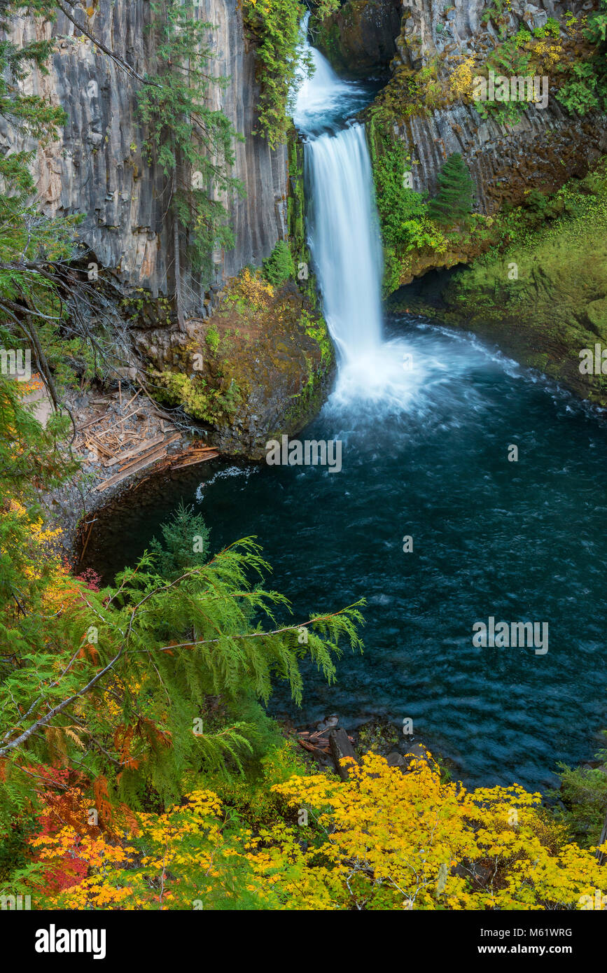 Toketee Falls, North Umpqua River, Umpqua National Forest, Douglas County, Oregon - Stock Image