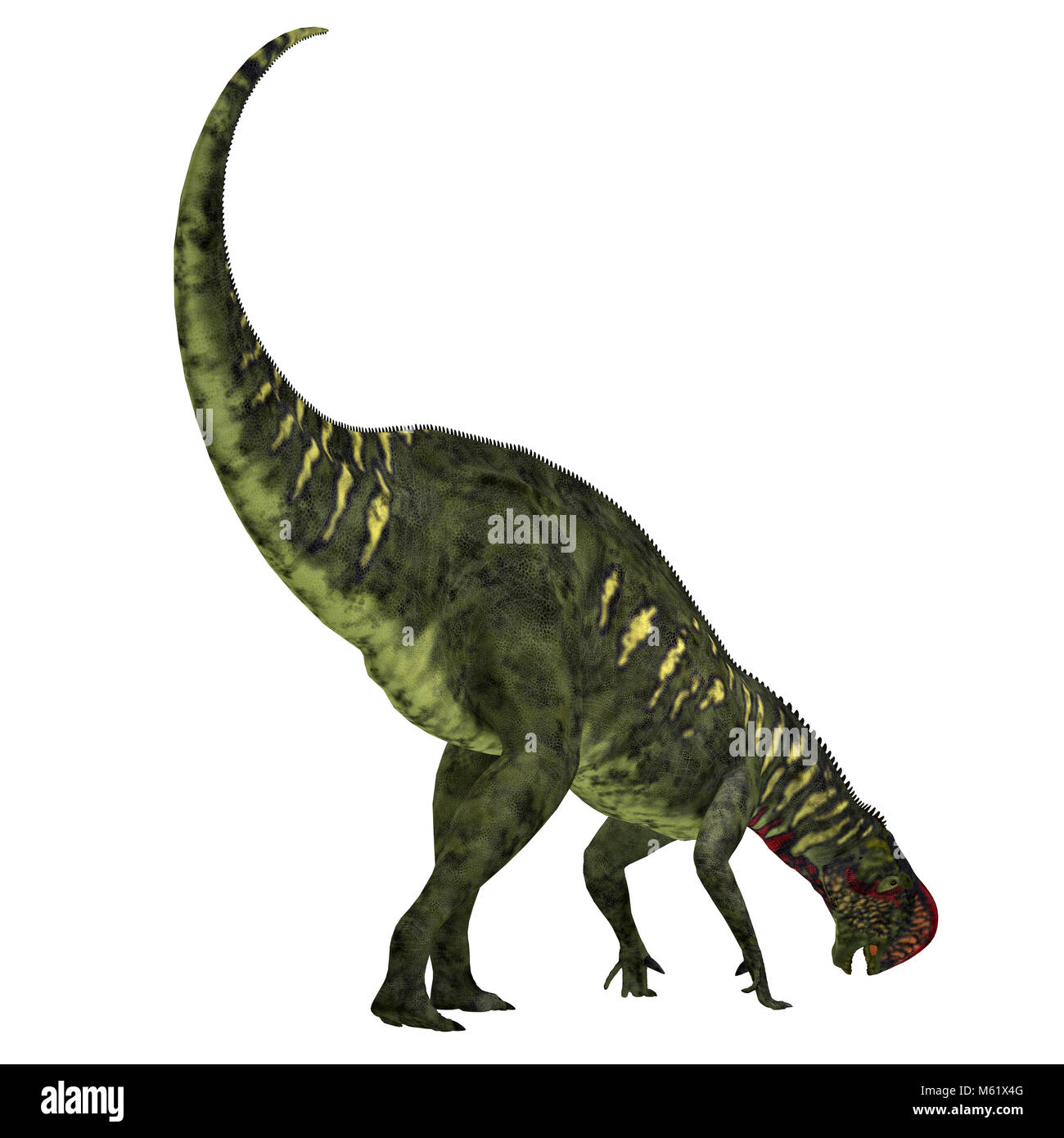 Altirhinus was an iguanodont herbivore dinosaur from the Cretaceous Period of Mongolia. - Stock Image