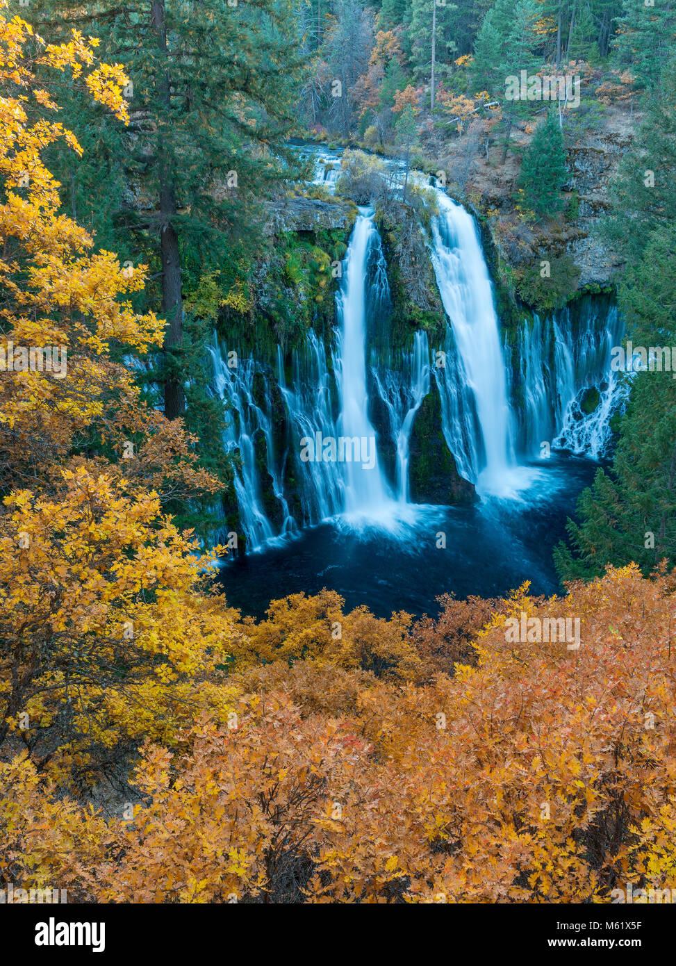 Waterfalls, California Black Oak, Burney Falls Memorial State Park, Shasta County, California - Stock Image