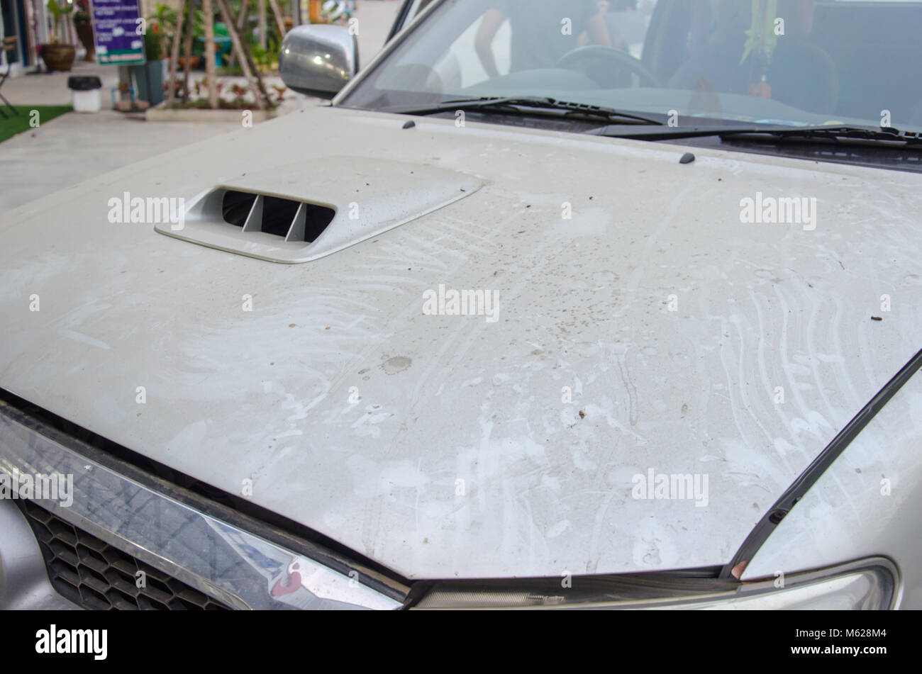 Dirt on the front hood of the car. - Stock Image