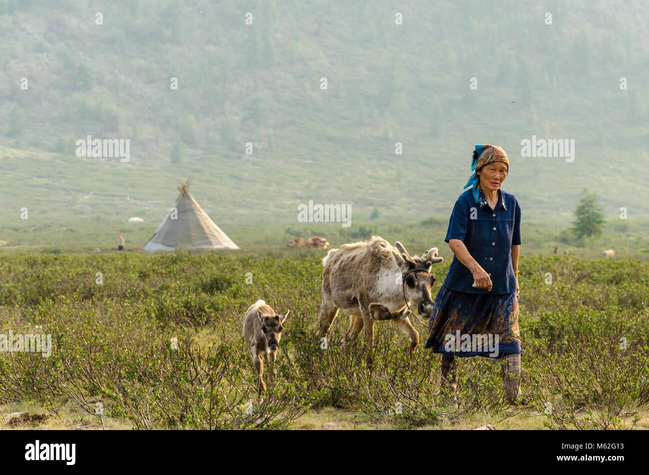 Tsaatan, Reindeer Herder, Tsaaganuur, Mongolia - Stock Image