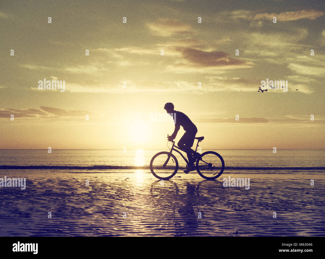 Mountain biker on beach at sunrise with birds flying behind. - Stock Image