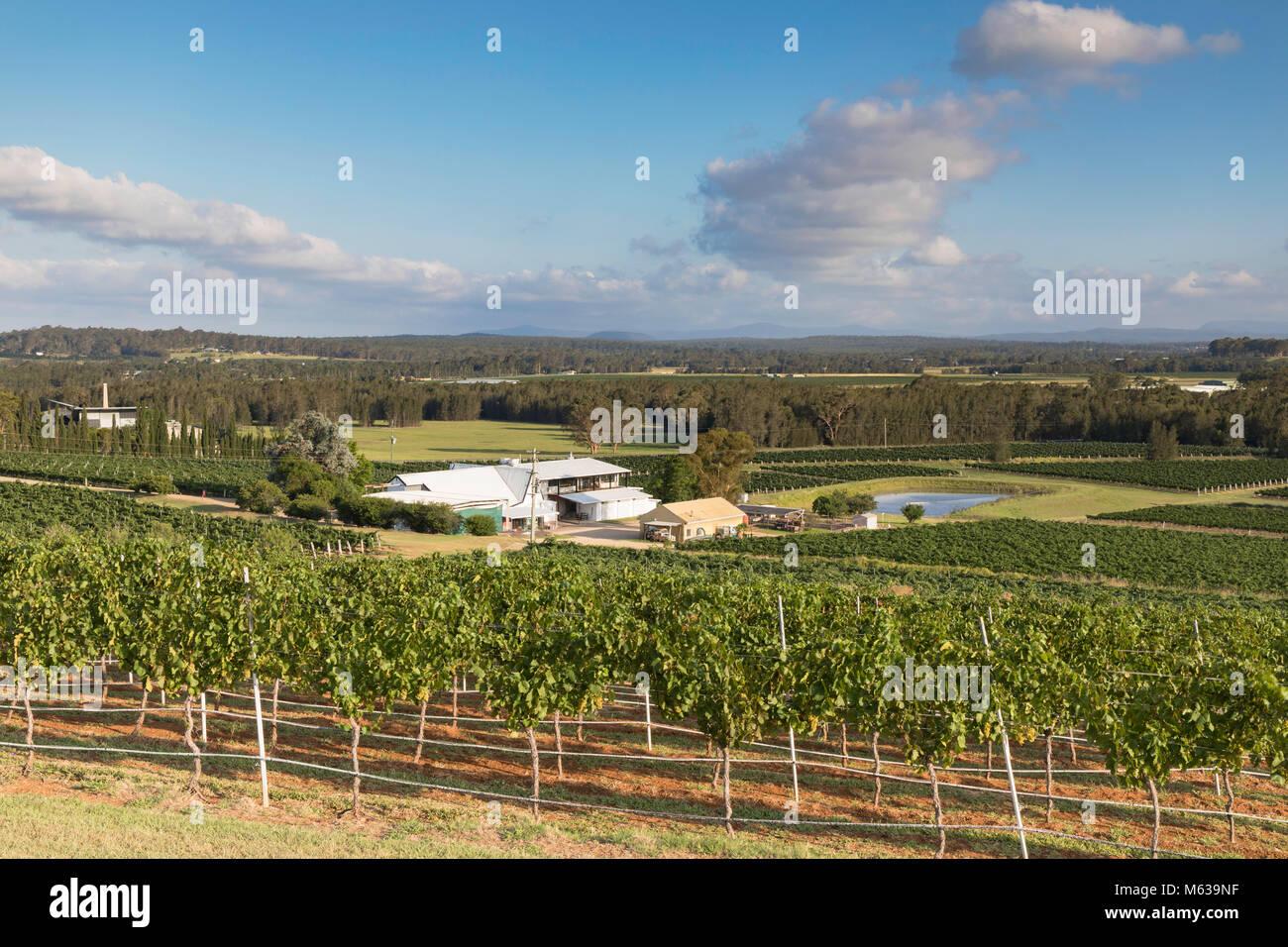 Lakes Folly Wine Estate, Hunter Valley, New South Wales, Australia Stock Photo