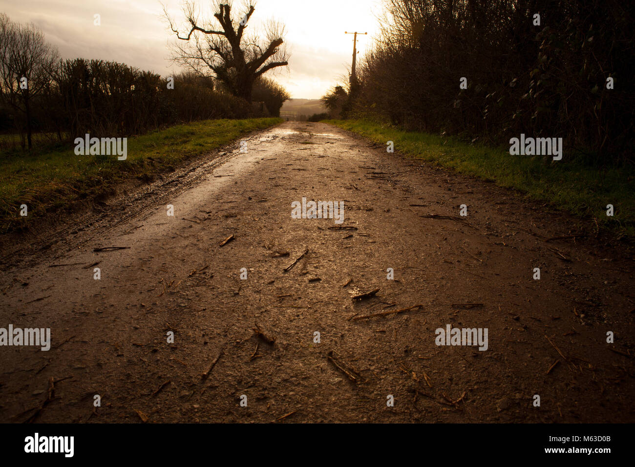 Old country road around Deddington leading out of image with vanishing point - Stock Image