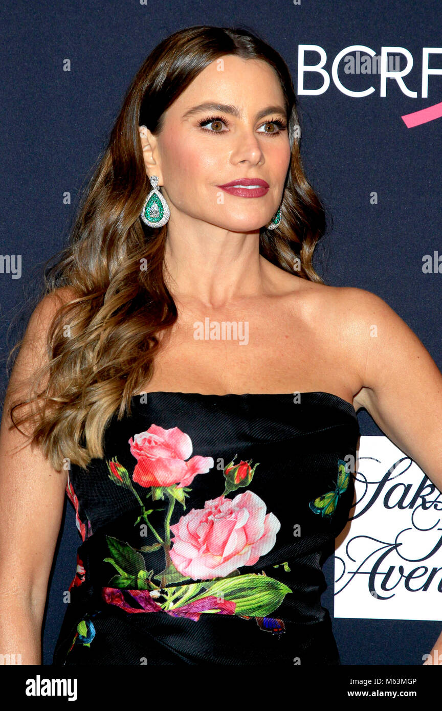 Sofía Vergara attending 'The Women's Cancer Research Fund's an Unforgettable Evening' Benefit Gala at Beverly Wilshire Stock Photo