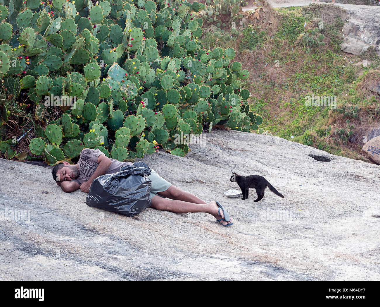 A black cat trying to steal food from a sleeping man - Stock Image