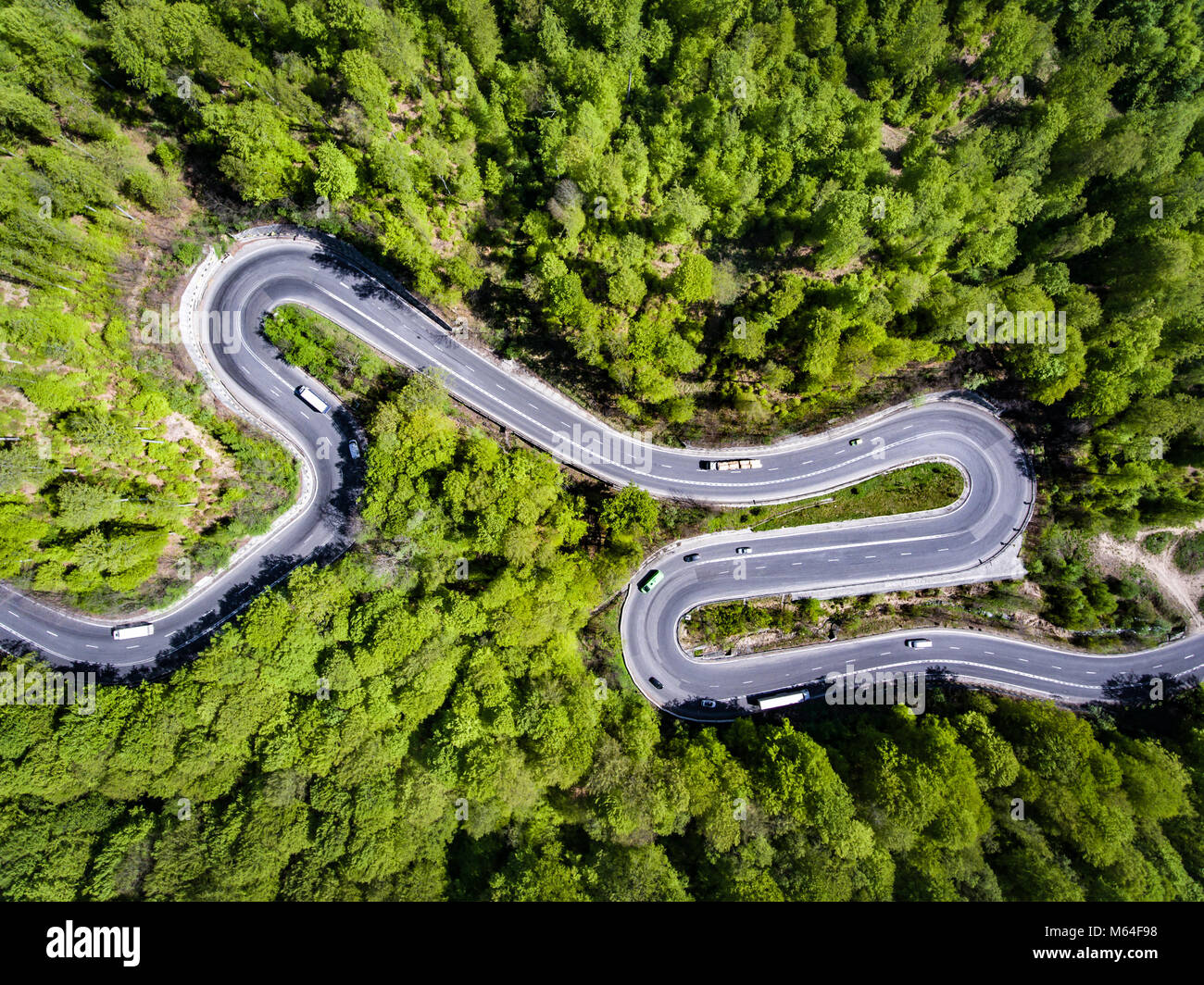 Car on winding road trough the forest, Transilvania, Romania - Stock Image