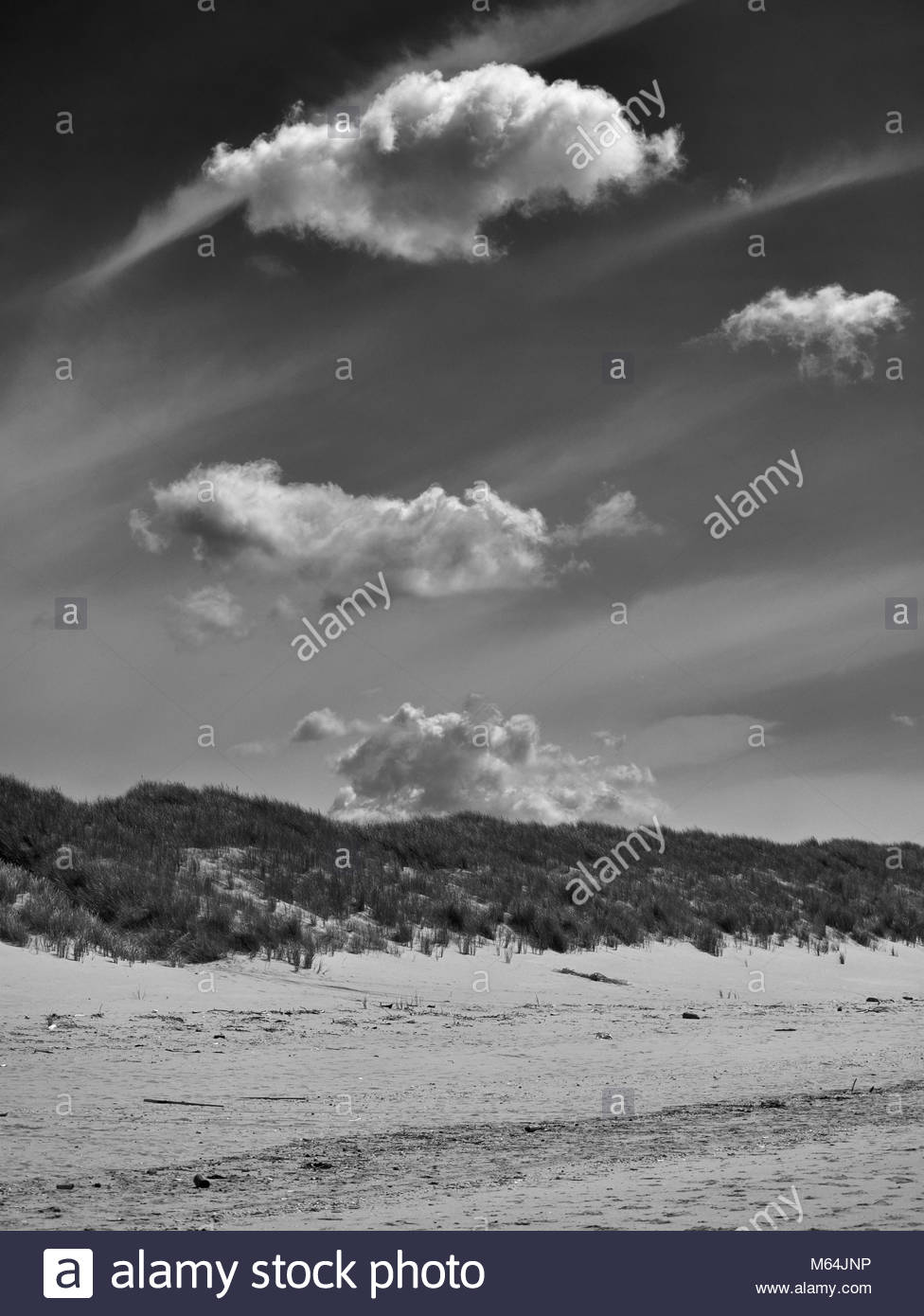The sandy beach and marram grass ammophilia arenaria covered dunes on Aberavon beach near port talbot in south wales - Stock Image