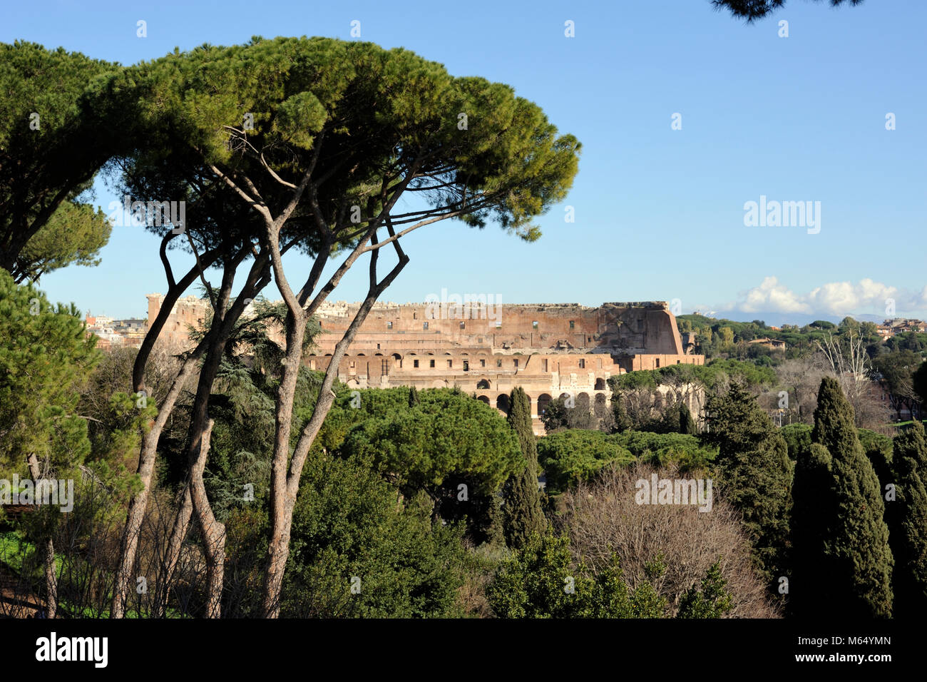 italy, rome, colosseum - Stock Image