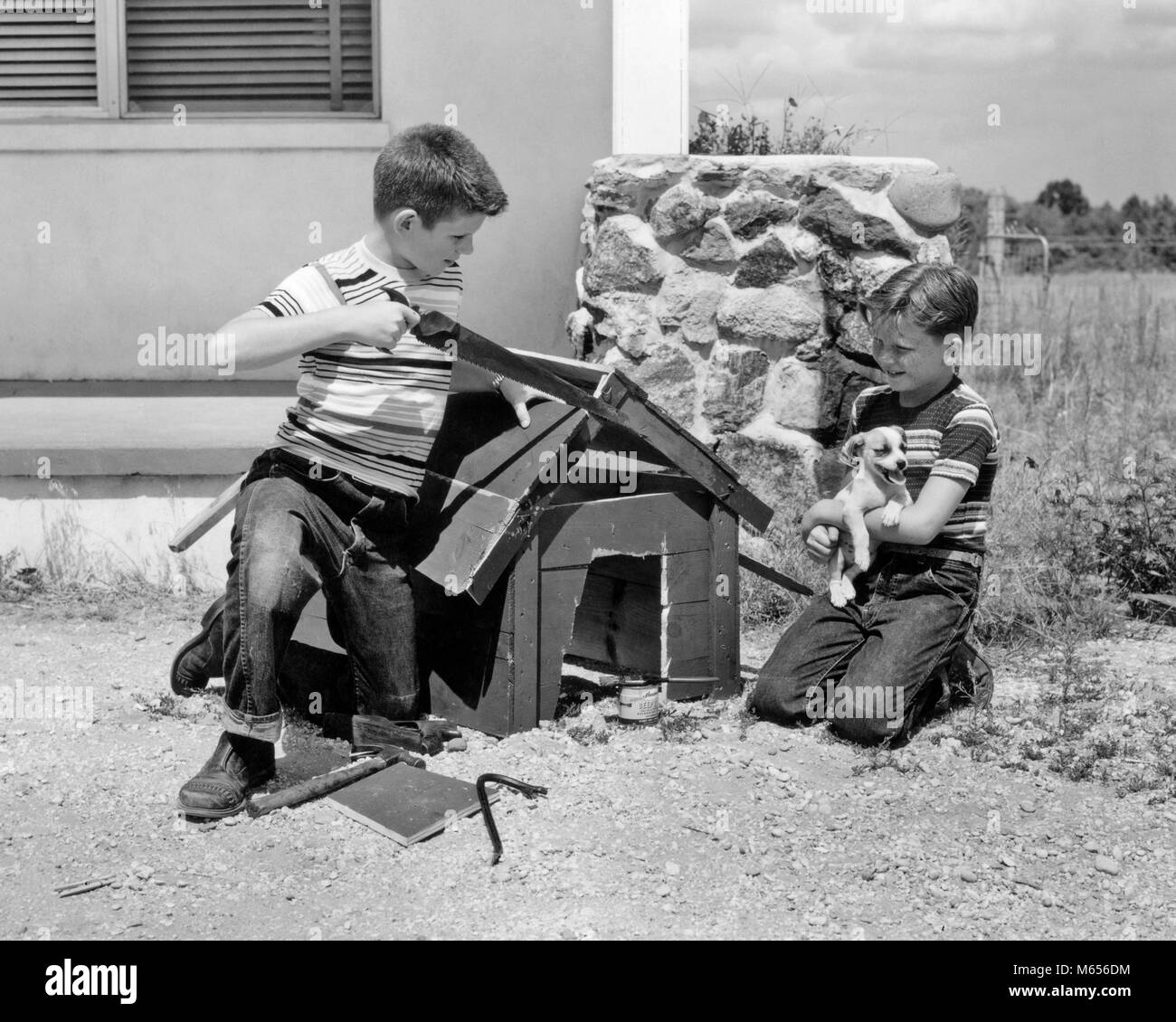 1950s 1960s TWO BOYS BUILDING DOG HOUSE FOR THEIR NEW PUPPY DOG - d2720 HAR001 HARS TOGETHERNESS 10-12 YEARS 7-9 - Stock Image