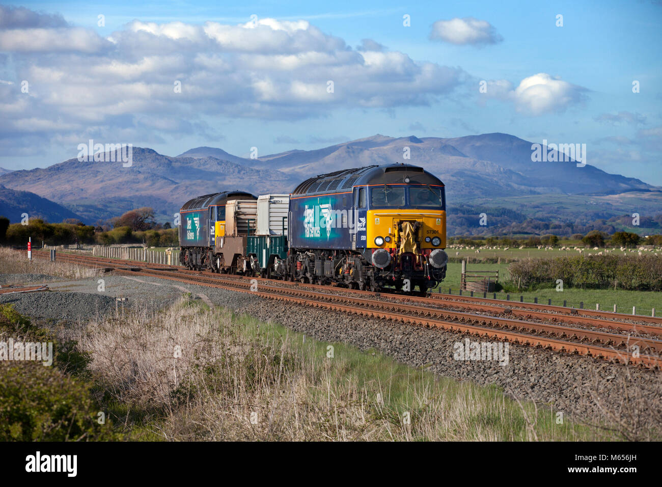 2 Direct rail Services class 57 locomotives pass Millom marsh, Cumbria with  nuclear flasks from    Heysham - Stock Image